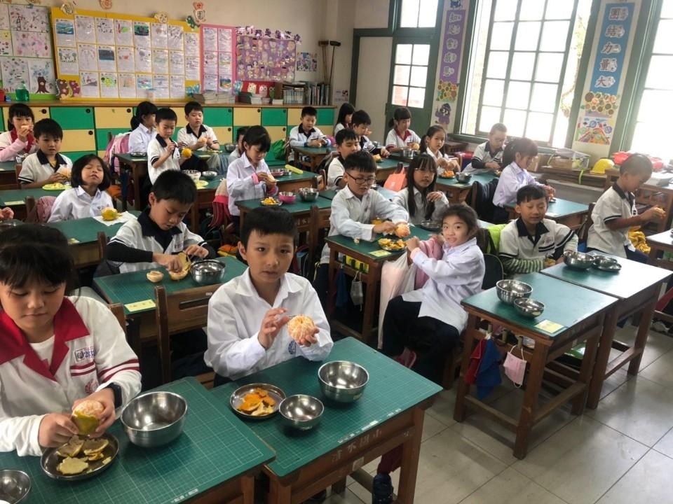推廣食農教育 中市農業局供應學童11公噸椪柑。(特派員林惠貞翻攝)