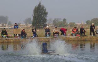 春節歡迎鄉親相揪來水試所體驗「樂不思蜀釣魚趣」!。(記者吳旻高翻攝)