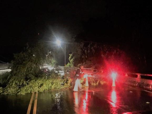「哈」颱驚人雨勢竹林塌 旗警迅速到場排除。(特派員林惠貞翻攝)